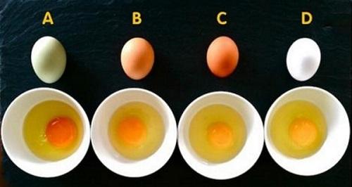 Trị nám bằng trứng gà