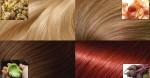 """Phương pháp nhuộm tóc lên màu tự nhiên tại gia không hề """"đụng tới"""" hóa chất"""